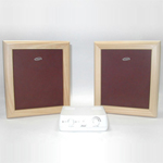Picture of Flat Panel Speaker for Model No A 001W