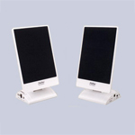 Picture of Flat Panel Speaker for Model No A 002